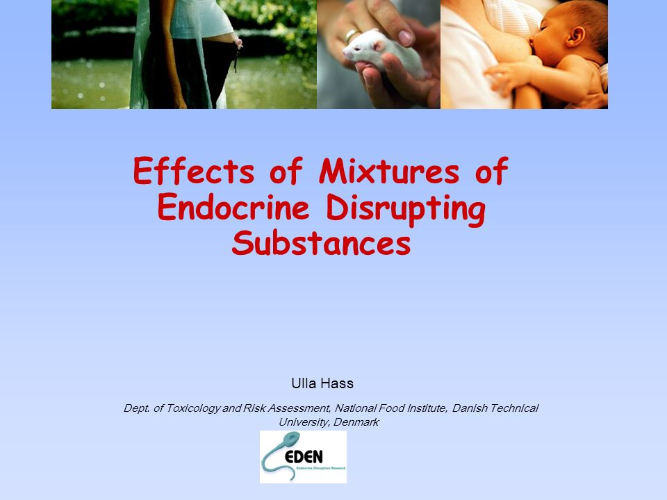 Effects of Mixtures of Endocrine Disrupting Substances Ulla Hass Dept. of Toxicology and Risk Assessment, National Food Institute, Danish Technical Un