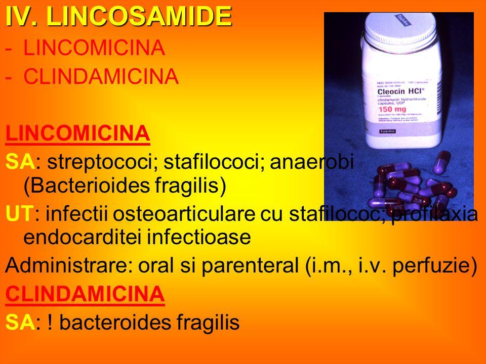 V.GLICOPEPTIDE -VANCOMICINA -TEICOPLANINA VANCOMICINA – VANCOCINE fl.