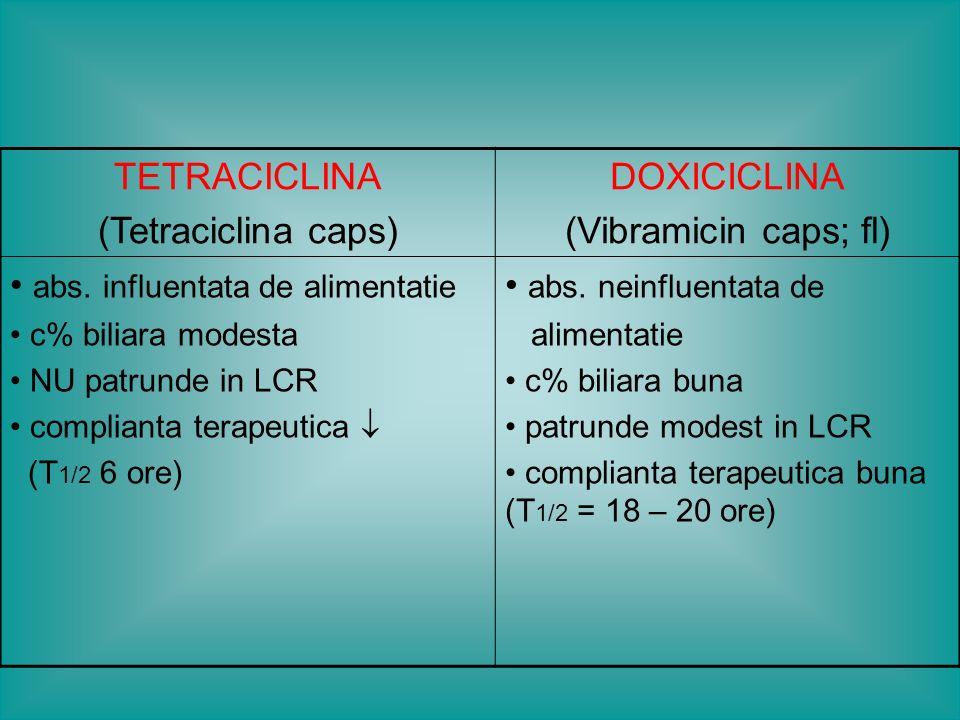 MA: impiedica sinteza proteica si replicarea bacteriana SA: Gonococ; Brucella; Yersinia; V.