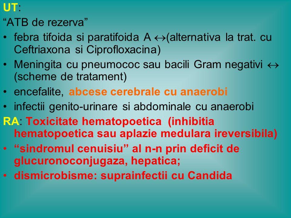 CHINOLONE GENERATIA I ACID NALIDIXIC GENERATIA II ACID OXALINICCINOXACINA ACID PIPEMIDIC ROXACINA .