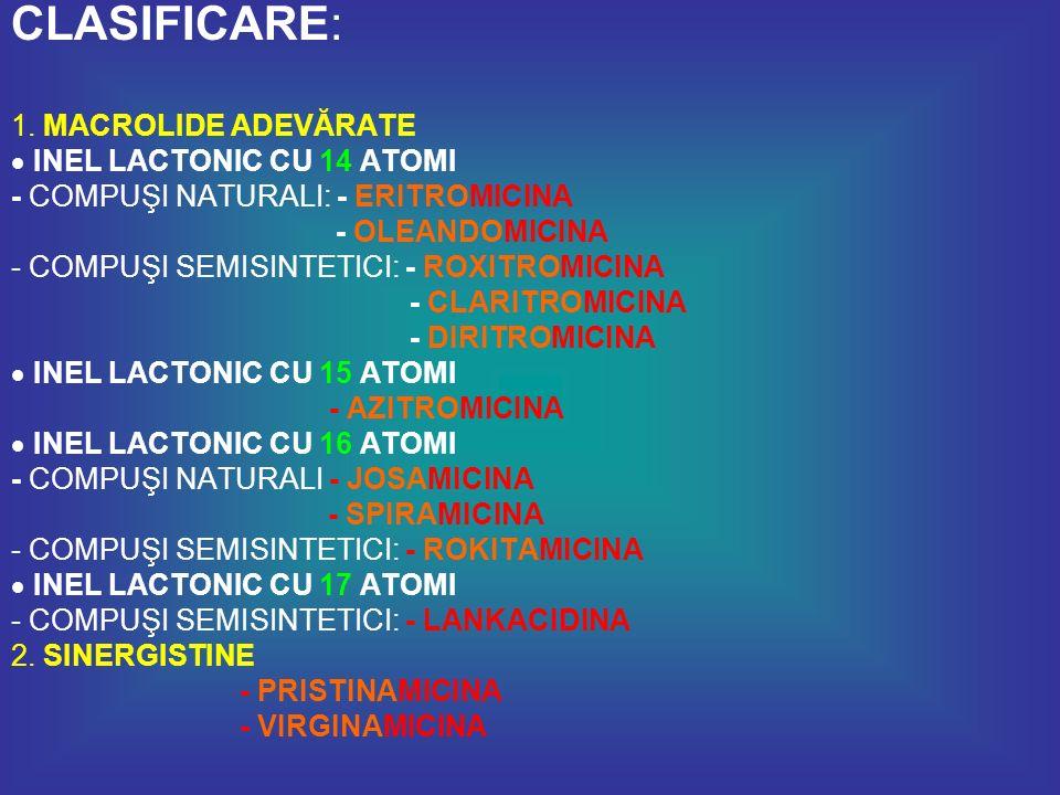 Macrolide vechi : - ERITROMICINA - OLEANDOMICINA - JOSAMICINA - SPIRAMICINA Macrolide noi : - ROXITROMICINA - CLARITROMICINA - DIRITROMICINA - AZITROMICINA - ROKITAMICINA