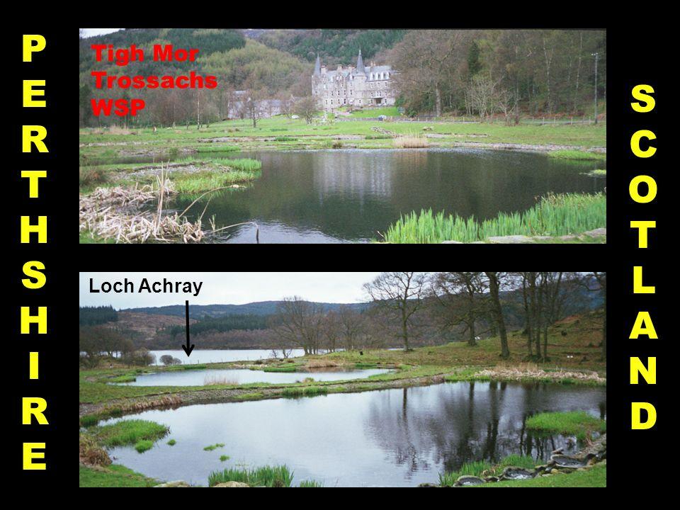 PERTHSHIREPERTHSHIRE SCOTLANDSCOTLAND Loch Achray Tigh Mor Trossachs WSP
