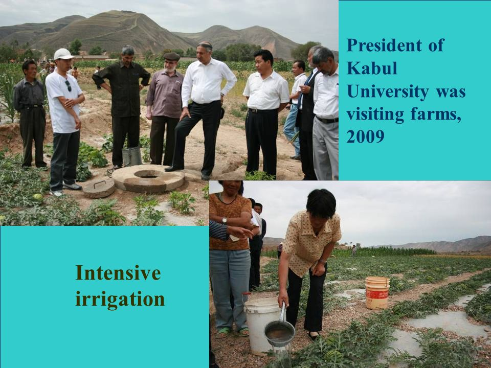 Intensive irrigation President of Kabul University was visiting farms, 2009
