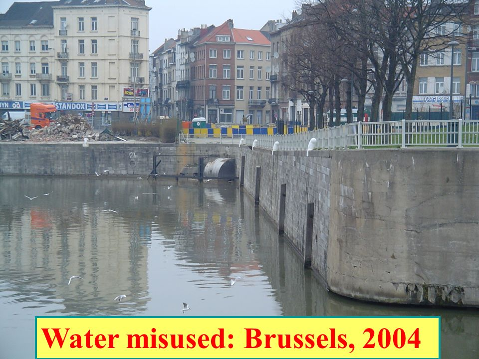 Water misused: Brussels, 2004