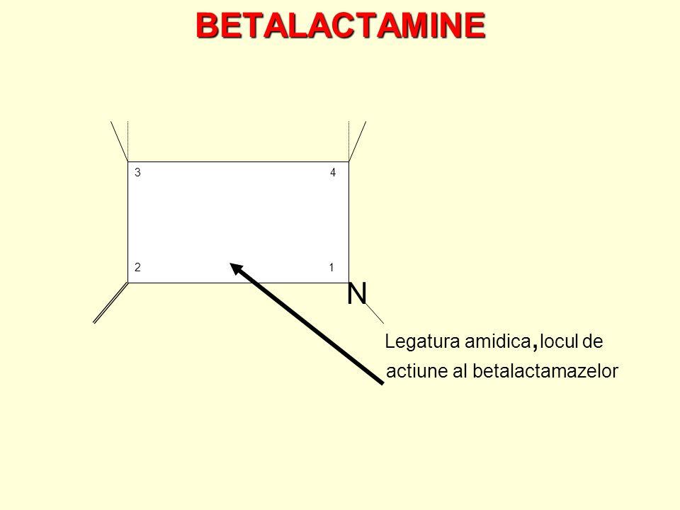 BETALACTAMINE N Legatura amidica, locul de actiune al betalactamazelor 3 4 2 1