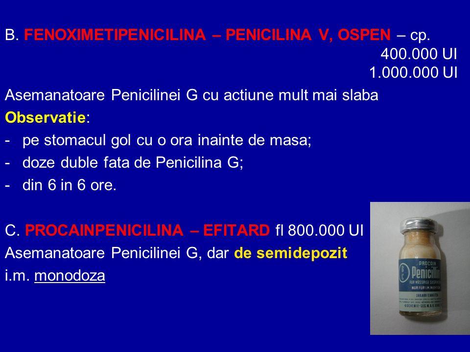 B. FENOXIMETIPENICILINA – PENICILINA V, OSPEN – cp. 400.000 UI 1.000.000 UI Asemanatoare Penicilinei G cu actiune mult mai slaba Observatie: -pe stoma