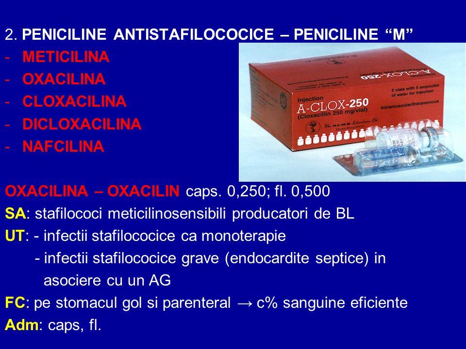2. PENICILINE ANTISTAFILOCOCICE – PENICILINE M -METICILINA -OXACILINA -CLOXACILINA -DICLOXACILINA -NAFCILINA OXACILINA – OXACILIN caps. 0,250; fl. 0,5