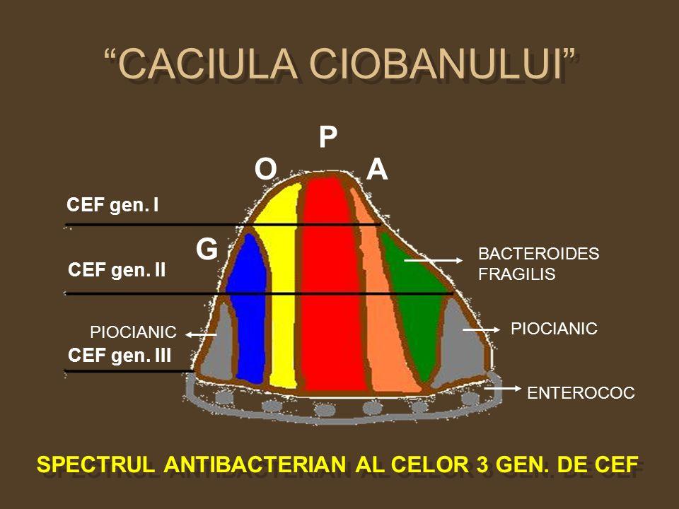 CACIULA CIOBANULUI G O P A CEF gen. I CEF gen. II CEF gen. III BACTEROIDES FRAGILIS PIOCIANIC ENTEROCOC PIOCIANIC SPECTRUL ANTIBACTERIAN AL CELOR 3 GE