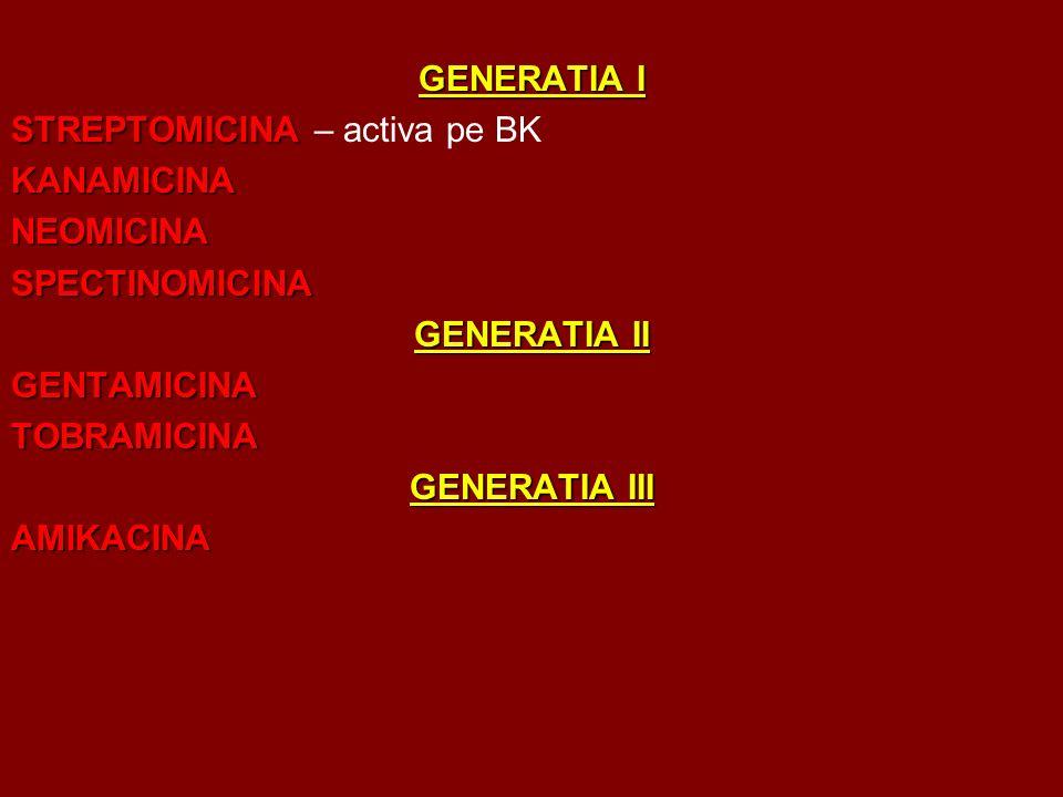 GENERATIA I STREPTOMICINA STREPTOMICINA – activa pe BKKANAMICINANEOMICINASPECTINOMICINA GENERATIA II GENTAMICINATOBRAMICINA GENERATIA III AMIKACINA