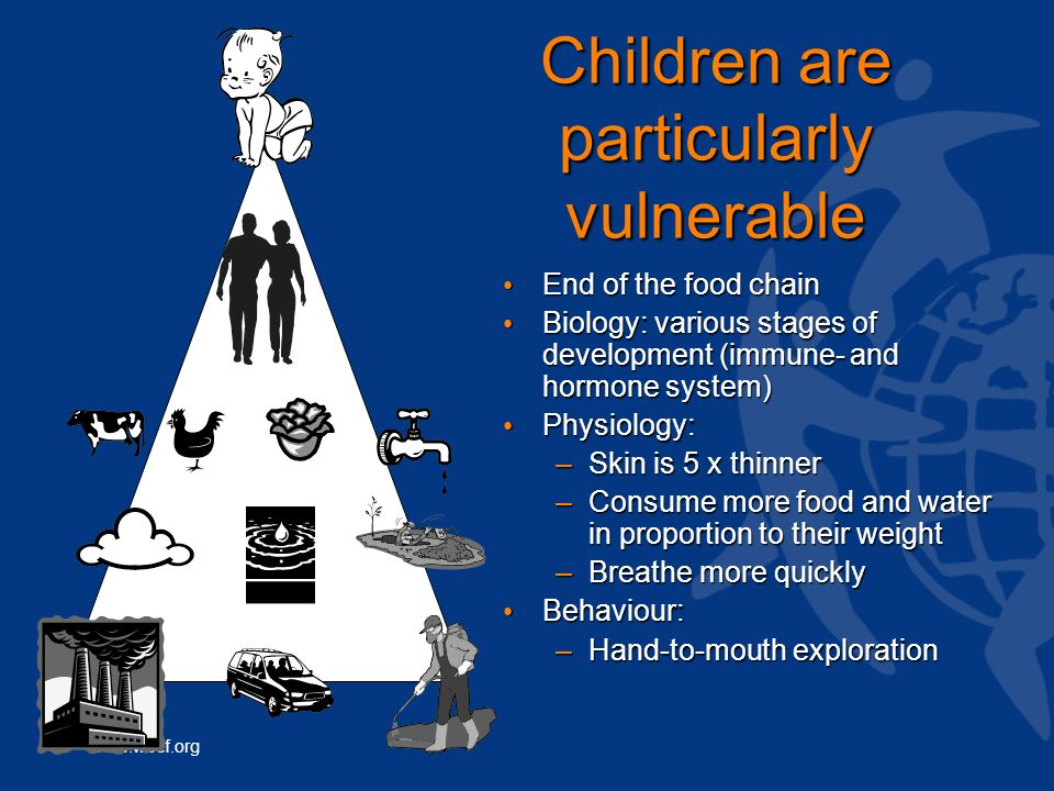 www.wecf.org Children are particularly vulnerable End of the food chain End of the food chain Biology: various stages of development (immune- and hormone system) Biology: various stages of development (immune- and hormone system) Physiology: Physiology: –Skin is 5 x thinner –Consume more food and water in proportion to their weight –Breathe more quickly Behaviour: Behaviour: –Hand-to-mouth exploration