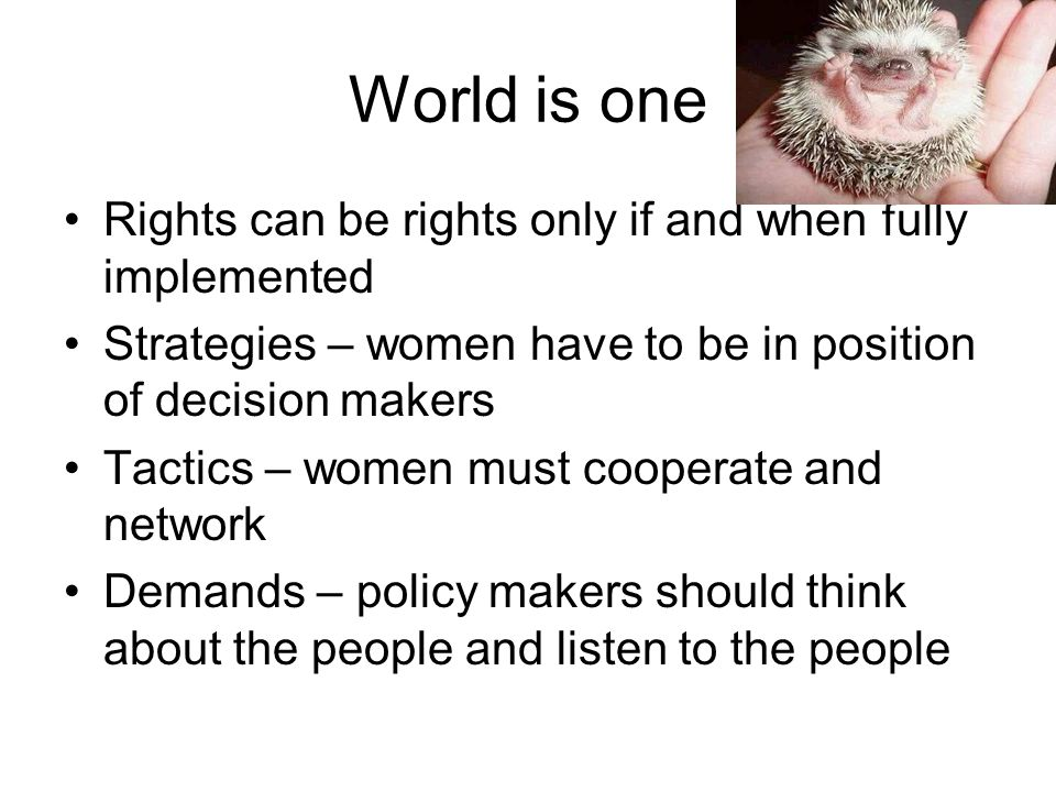 World is one Rights can be rights only if and when fully implemented Strategies – women have to be in position of decision makers Tactics – women must