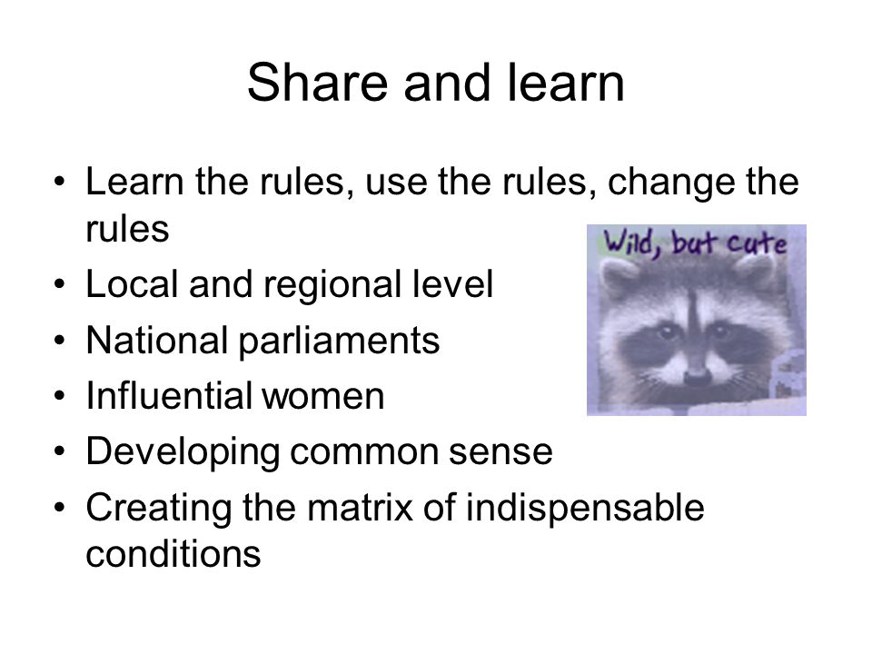 Share and learn Learn the rules, use the rules, change the rules Local and regional level National parliaments Influential women Developing common sen