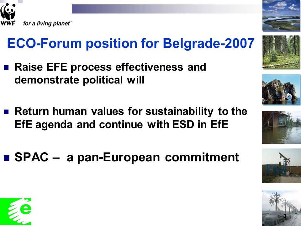 3 ECO-Forum position for Belgrade-2007 Raise EFE process effectiveness and demonstrate political will Return human values for sustainability to the EfE agenda and continue with ESD in EfE SPAC – a pan-European commitment