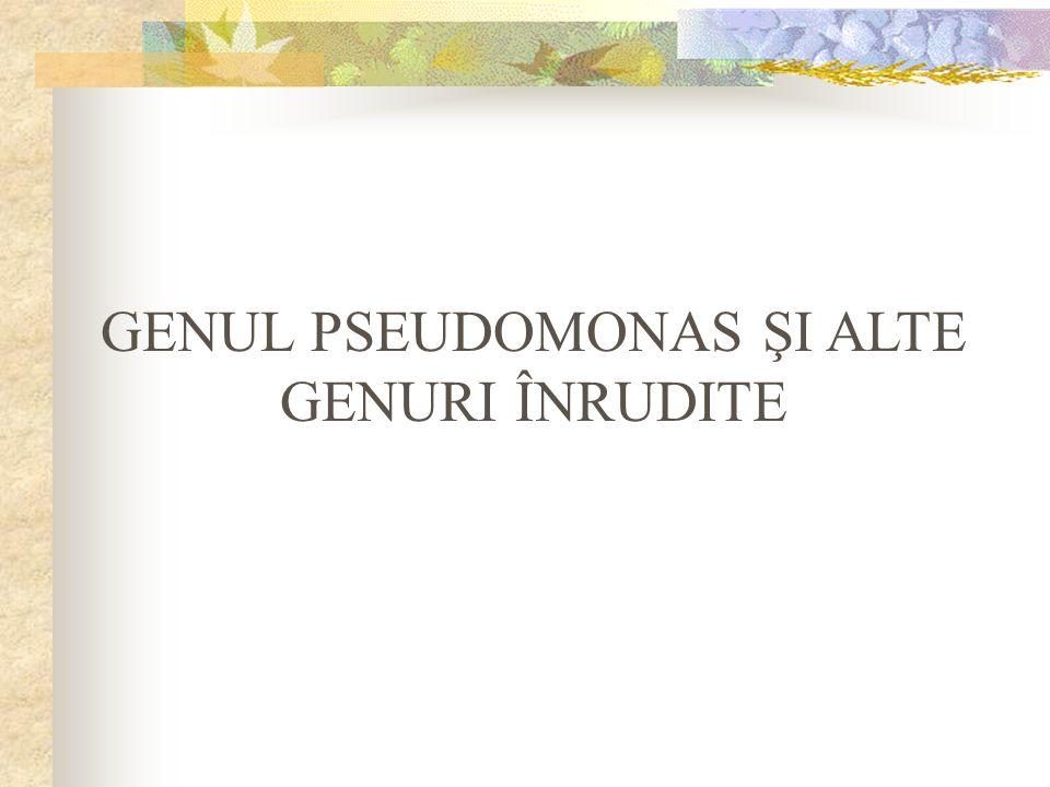 GENUL PSEUDOMONAS ŞI ALTE GENURI ÎNRUDITE