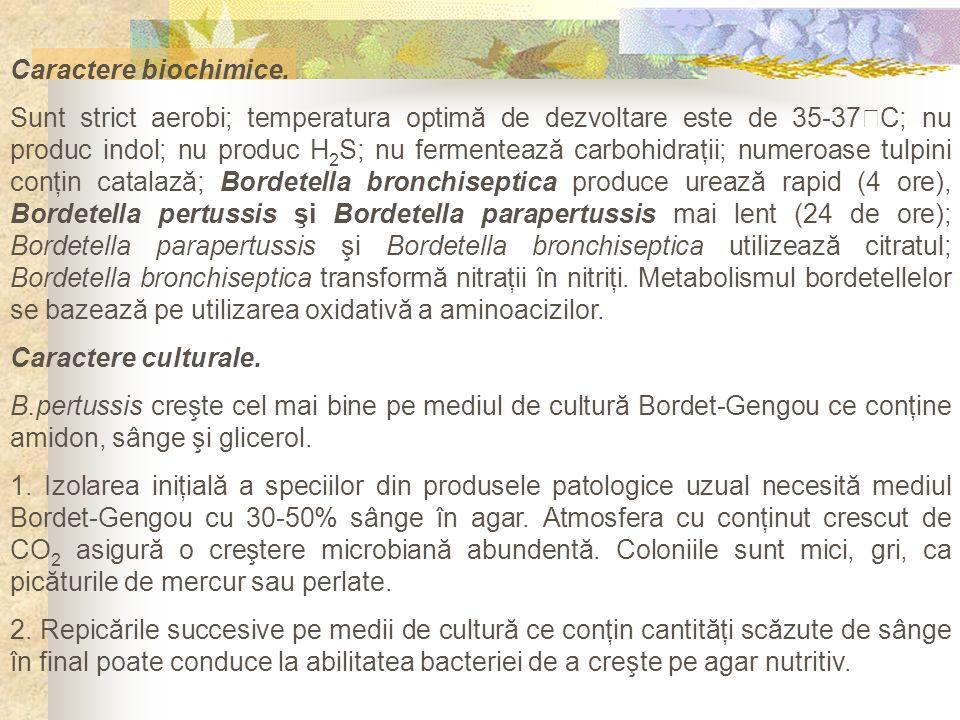 Caractere biochimice. Sunt strict aerobi; temperatura optimă de dezvoltare este de 35-37 C; nu produc indol; nu produc H 2 S; nu fermentează carbohidr