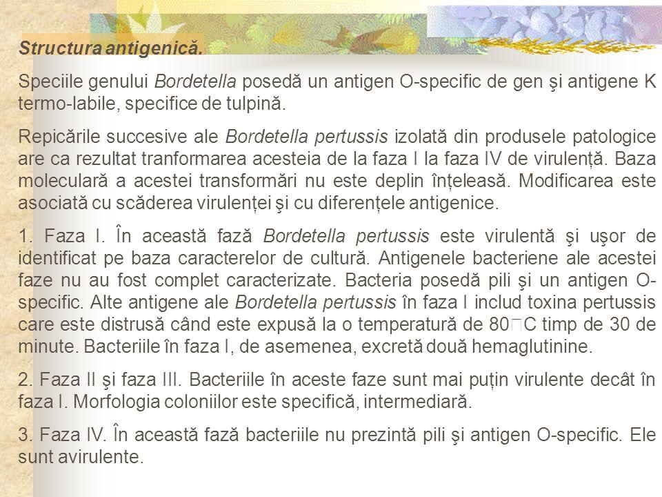 Structura antigenică. Speciile genului Bordetella posedă un antigen O-specific de gen şi antigene K termo-labile, specifice de tulpină. Repicările suc