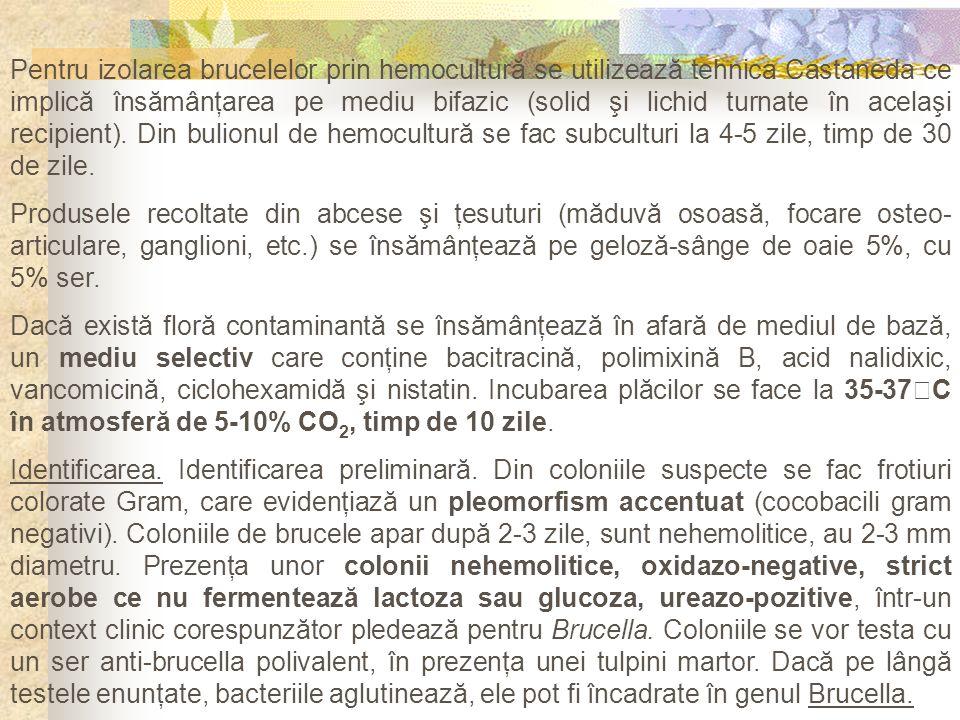 Pentru izolarea brucelelor prin hemocultură se utilizează tehnica Castaneda ce implică însămânţarea pe mediu bifazic (solid şi lichid turnate în acela