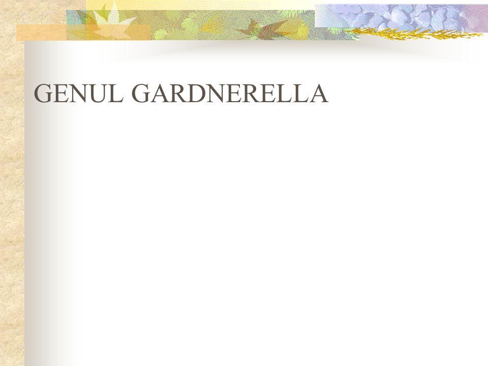 GENUL GARDNERELLA