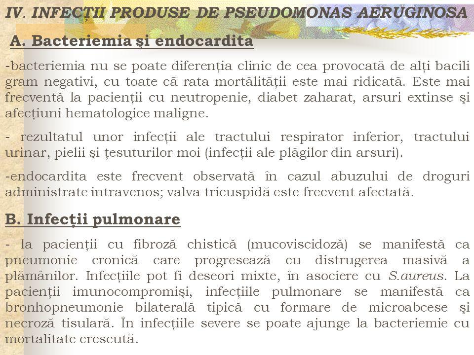 IV. INFECŢII PRODUSE DE PSEUDOMONAS AERUGINOSA A. Bacteriemia şi endocardita -bacteriemia nu se poate diferenţia clinic de cea provocată de alţi bacil