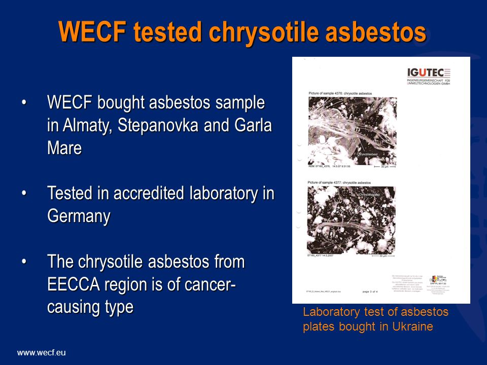 WECF bought asbestos sample in Almaty, Stepanovka and Garla MareWECF bought asbestos sample in Almaty, Stepanovka and Garla Mare Tested in accredited laboratory in GermanyTested in accredited laboratory in Germany The chrysotile asbestos from EECCA region is of cancer- causing typeThe chrysotile asbestos from EECCA region is of cancer- causing type WECF tested chrysotile asbestos Laboratory test of asbestos plates bought in Ukraine