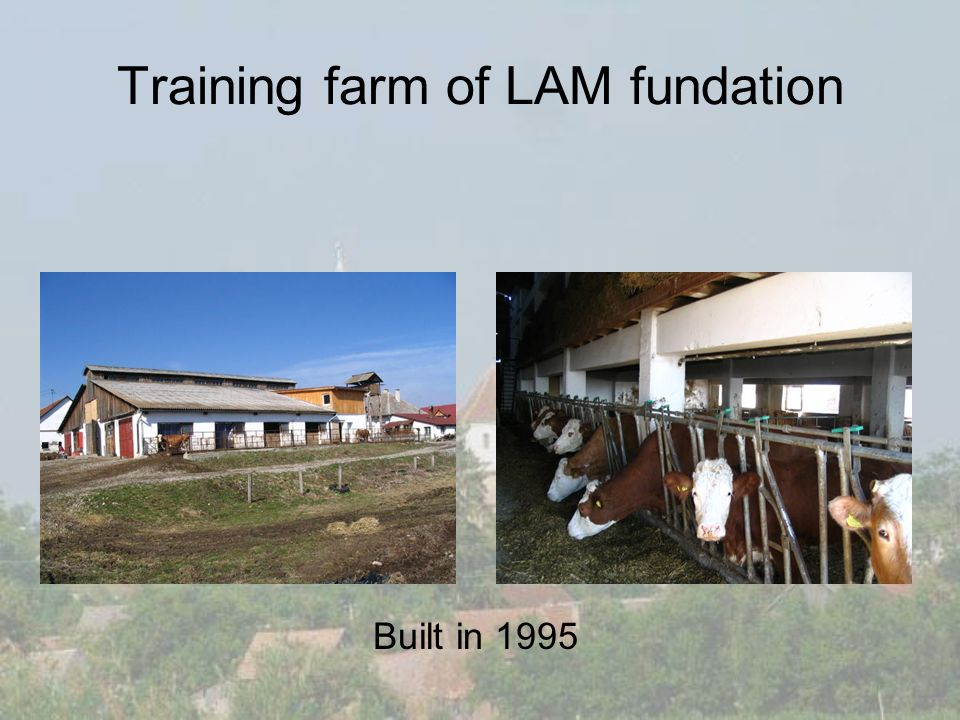 Training farm of LAM fundation Built in 1995
