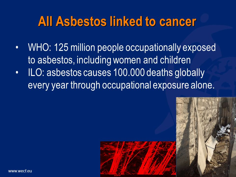 WHO: 125 million people occupationally exposed to asbestos, including women and children ILO: asbestos causes deaths globally every year through occupational exposure alone.