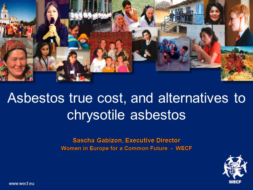 Asbestos true cost, and alternatives to chrysotile asbestos Sascha Gabizon, Executive Director Women in Europe for a Common Future - WECF www.wecf.eu