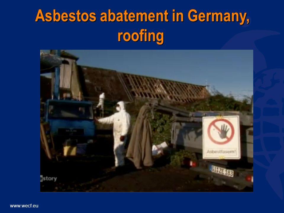 www.wecf.eu asbestos abatement in Germany, roofing asbestos abatement in Germany, roofing