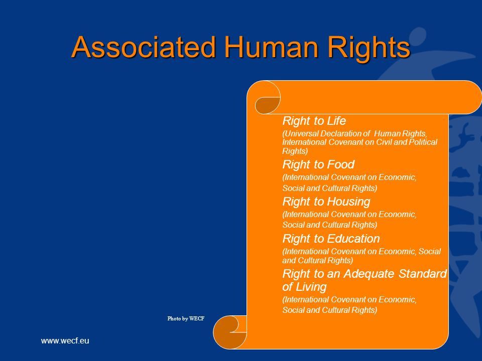www.wecf.eu Associated Human Rights Right to Life (Universal Declaration of Human Rights, International Covenant on Civil and Political Rights) Right