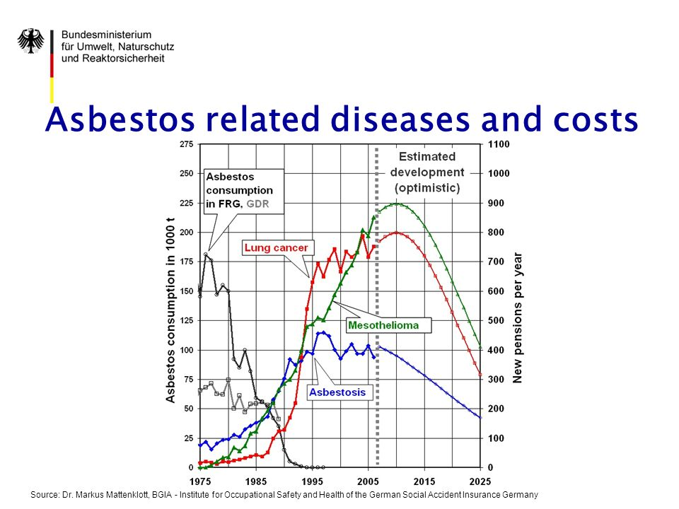 Asbestos related diseases and costs Source: Dr.