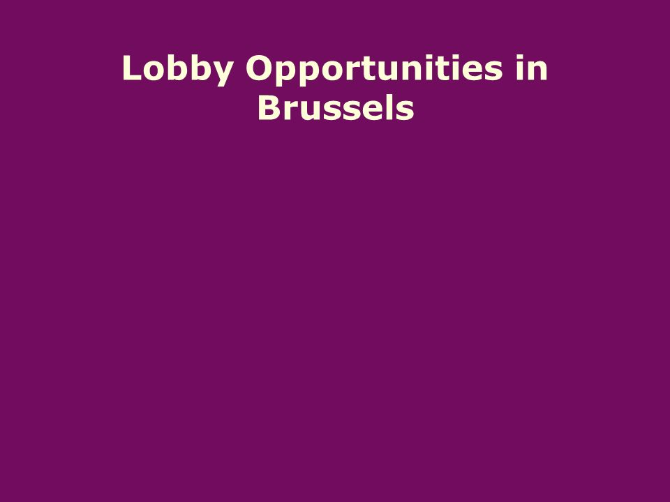 Lobby Opportunities in Brussels
