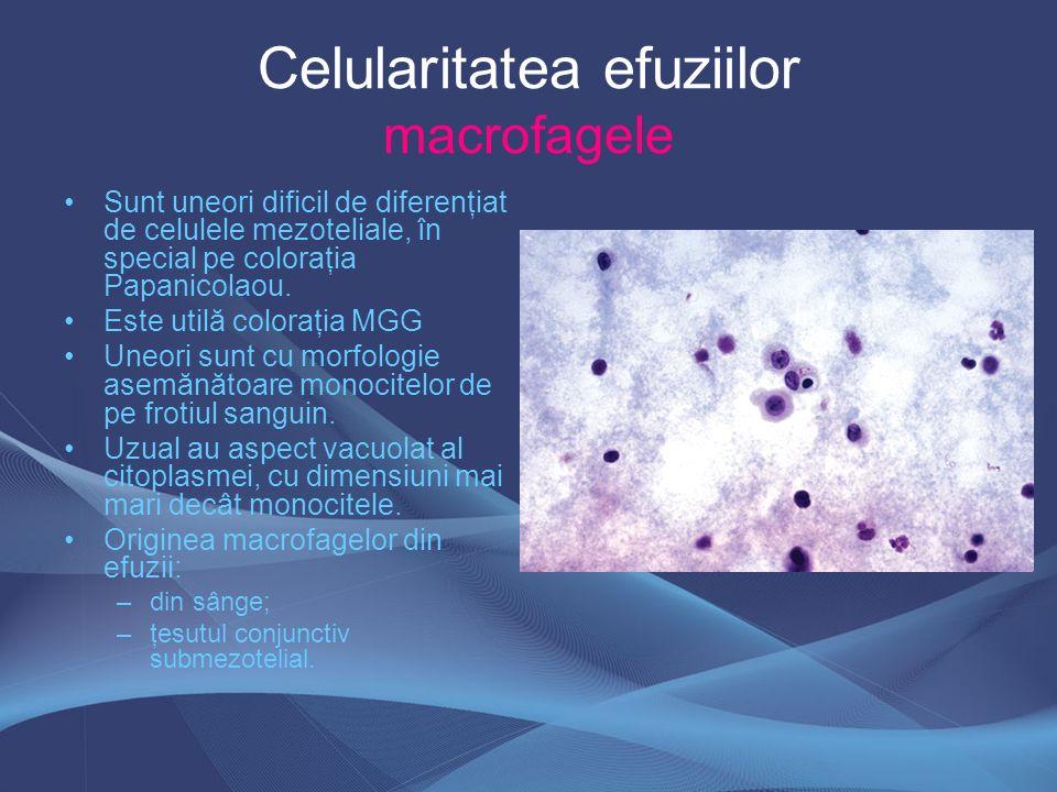 Celularitatea efuziilor macrofagele Sunt uneori dificil de diferenţiat de celulele mezoteliale, în special pe coloraţia Papanicolaou. Este utilă color