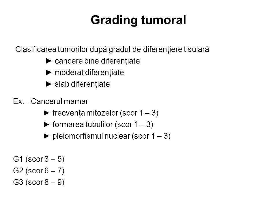 Grading tumoral Clasificarea tumorilor după gradul de diferenţiere tisulară cancere bine diferenţiate moderat diferenţiate slab diferenţiate Ex. - Can