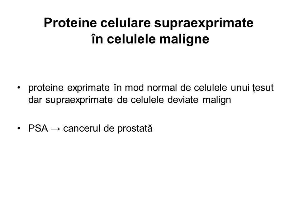 Proteine celulare supraexprimate în celulele maligne proteine exprimate în mod normal de celulele unui ţesut dar supraexprimate de celulele deviate ma