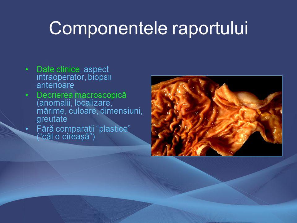 Componentele raportului Descrierea microscopică: –pentru clinician în majoritatea cazurilor inutilă –neinteresat de tipul nucleilor, caracterul citoplasmei Diagnosticul: –cel mai important capitol; –ex: Carcinom ductal infiltrativ (varianta clasică) G 2, pT 2 N 1 M X, cod ICD-O: Comentarii: diagnostic diferenţial, interpretare, elemente prognostice şi cu impact terapeutic Prezent: raportul patologic standardizat pentru fiecare organ şi tip de leziune