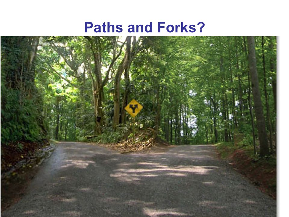 Paths and Forks?