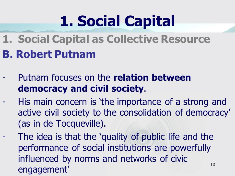 18 1. Social Capital 1.Social Capital as Collective Resource B.