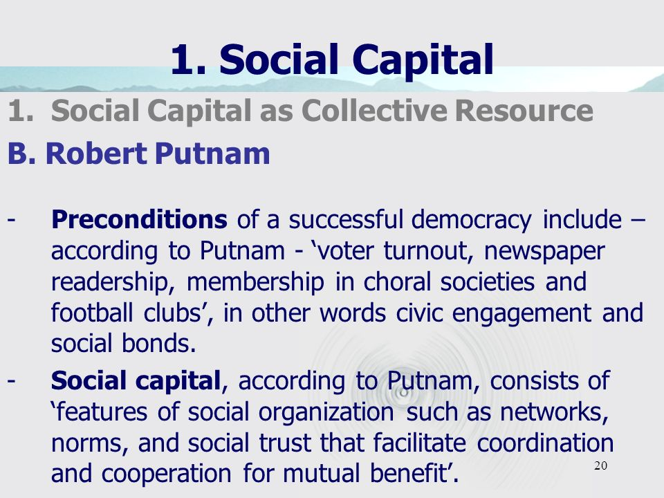 20 1. Social Capital 1.Social Capital as Collective Resource B.