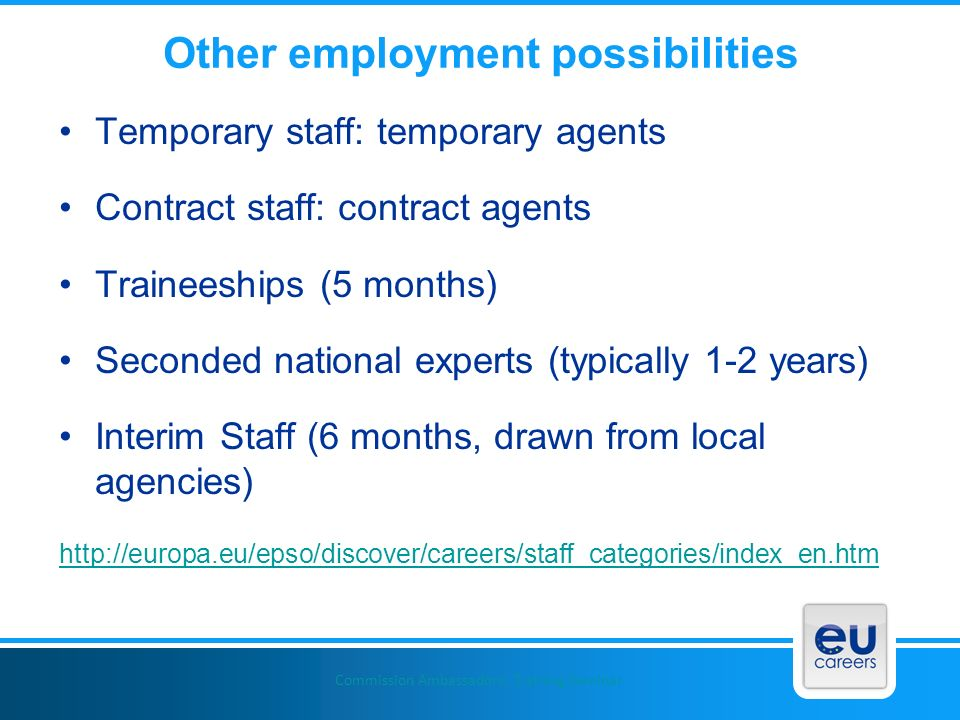 Other employment possibilities Temporary staff: temporary agents Contract staff: contract agents Traineeships (5 months) Seconded national experts (ty