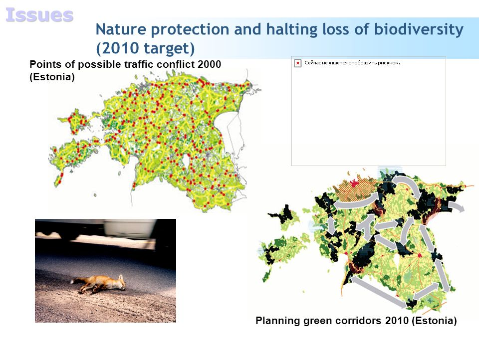Nature protection and halting loss of biodiversity (2010 target) Planning green corridors 2010 (Estonia) Points of possible traffic conflict 2000 (Estonia)Issues