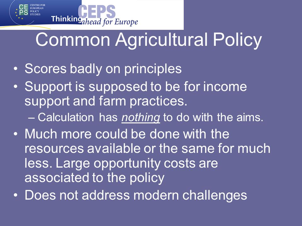 Common Agricultural Policy Scores badly on principles Support is supposed to be for income support and farm practices. –Calculation has nothing to do