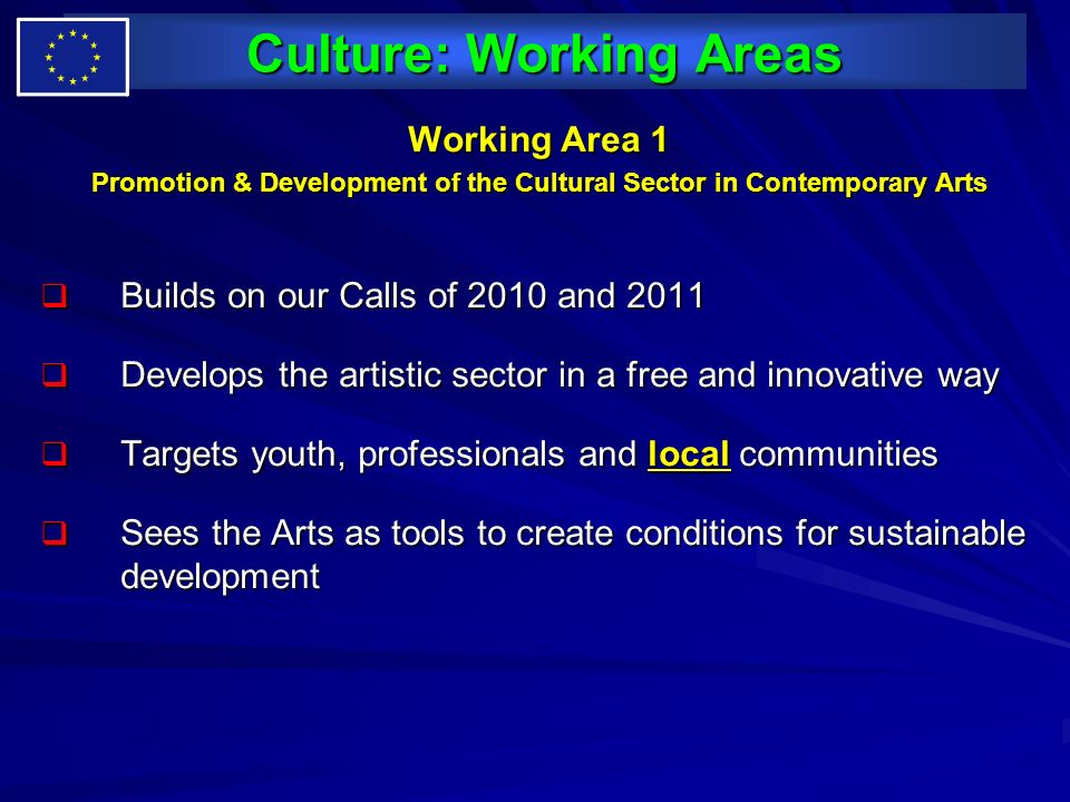 Culture: Working Areas Working Area 1 Promotion & Development of the Cultural Sector in Contemporary Arts Builds on our Calls of 2010 and 2011 Builds