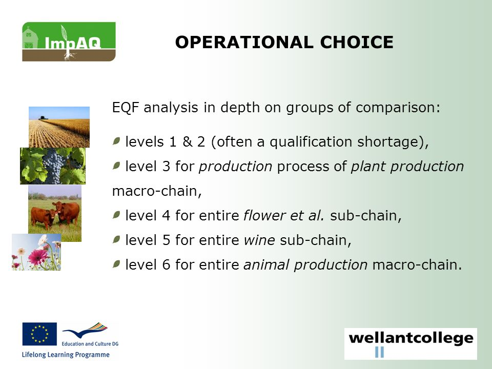 OPERATIONAL CHOICE EQF analysis in depth on groups of comparison: levels 1 & 2 (often a qualification shortage), level 3 for production process of plant production macro-chain, level 4 for entire flower et al.