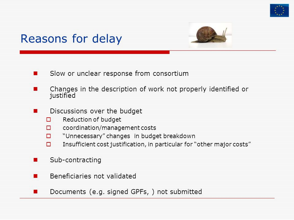 Reasons for delay Slow or unclear response from consortium Changes in the description of work not properly identified or justified Discussions over th