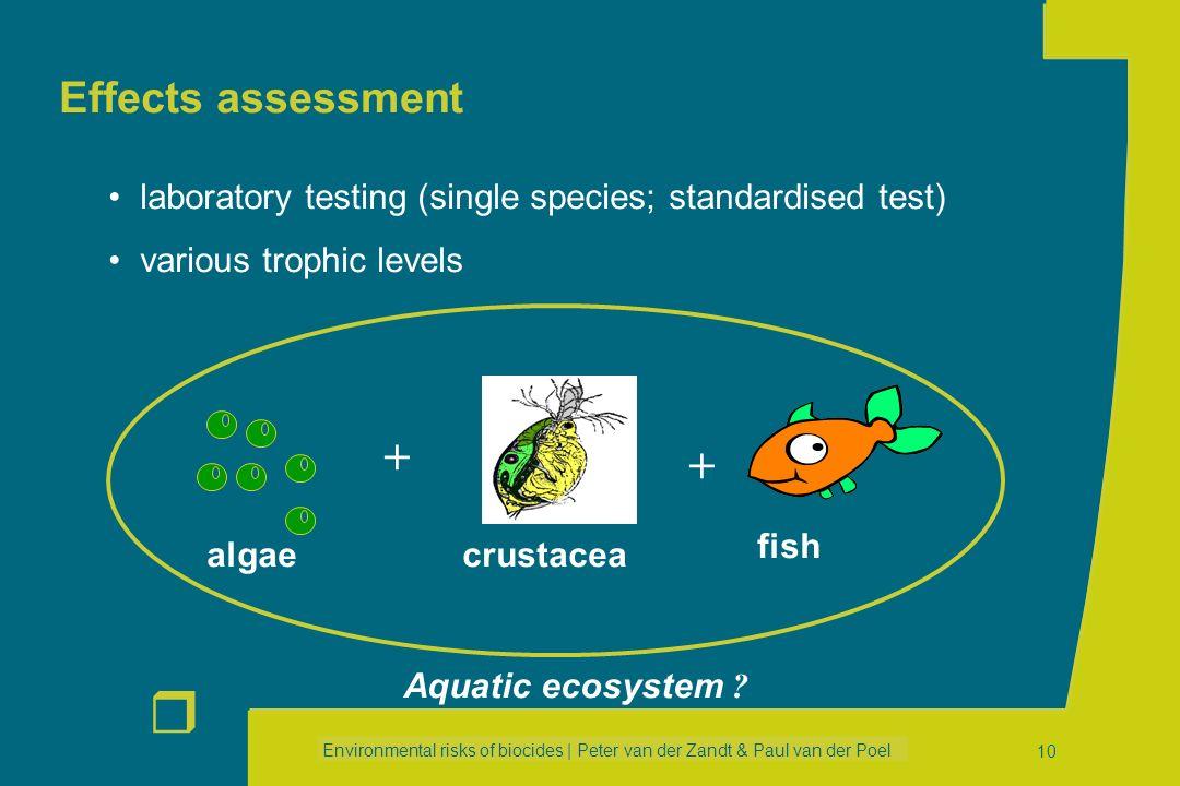 Environmental risks of biocides | Peter van der Zandt & Paul van der Poel r 9 Exposure assessment (results) Protection targetPEC _____________________
