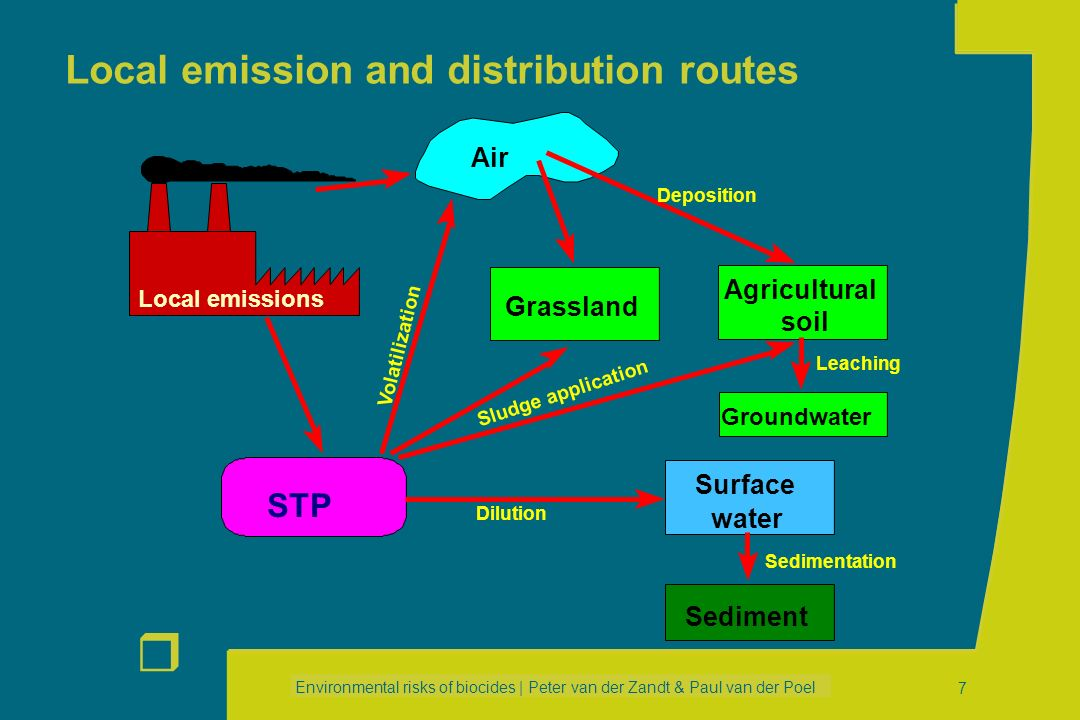 Environmental risks of biocides | Peter van der Zandt & Paul van der Poel r 6 Life cycle Life cycle PRODUCTION FORMULATION SERVICE LIFE PRIVATE USE IN