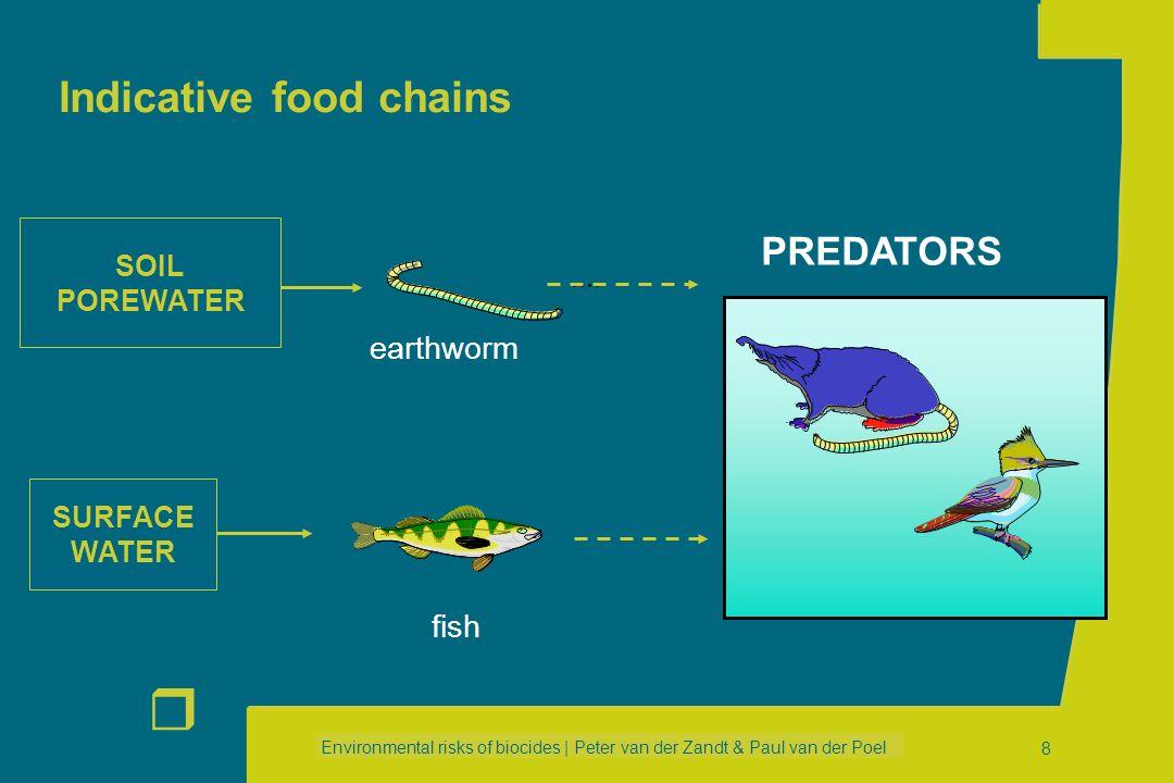 Environmental risks of biocides | Peter van der Zandt & Paul van der Poel r 8 Indicative food chains fish PREDATORS SOIL POREWATER SURFACE WATER earthworm