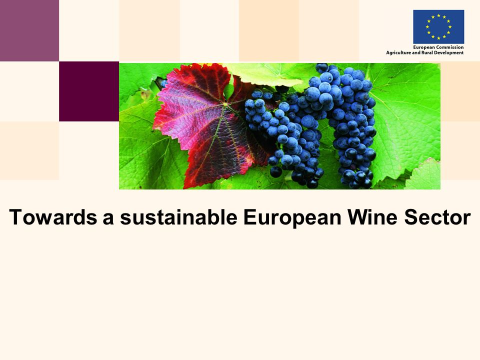 Towards a sustainable European Wine Sector