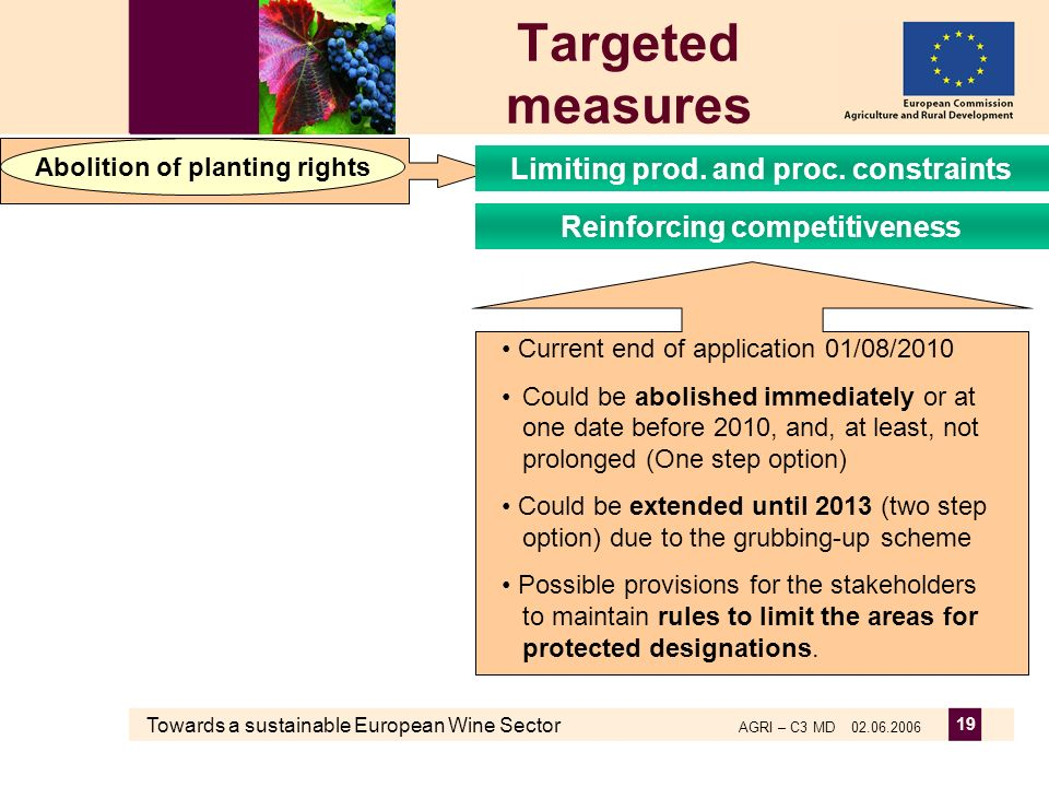 Towards a sustainable European Wine Sector AGRI – C3 MD 02.06.2006 19 Targeted measures Abolition of planting rights Reinforcing competitiveness Limit