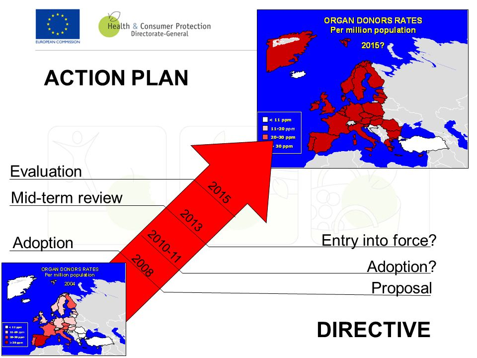 ACTION PLAN DIRECTIVE Adoption Proposal Adoption.